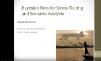 bayesian nets for stress testing and scenario analysis